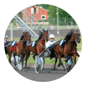 Legolas Bet - Spela på hästar & trav
