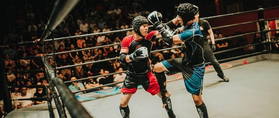 Kampsport och MMA
