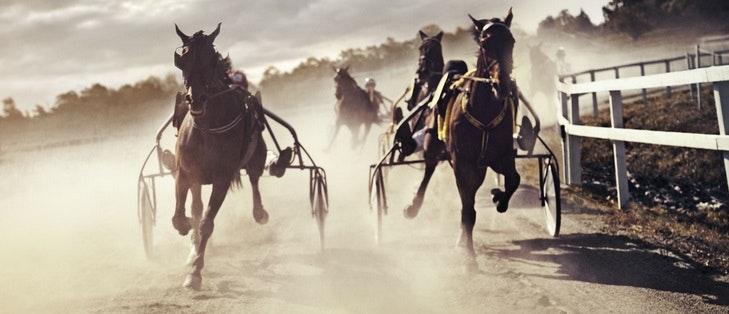 Trav & spela på hästar
