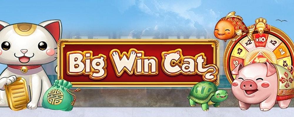 Big Win Cat från Play'N GO
