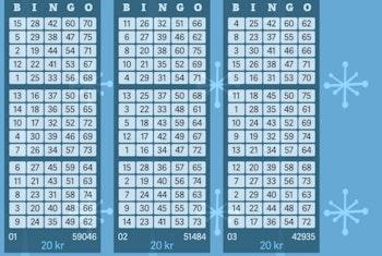 Vann över 655 000 kr på bingo