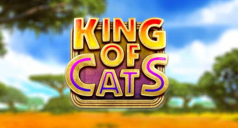 King of Cats från Big Time Gaming