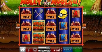 Moley Moolah från Reflex Gaming