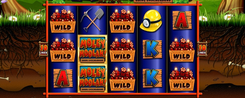 Moley Moolah från Reflex Gaming