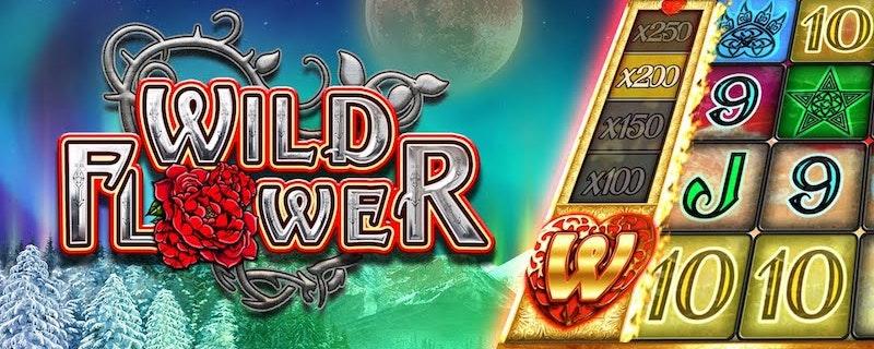 Wild Flower från Big Time Gaming